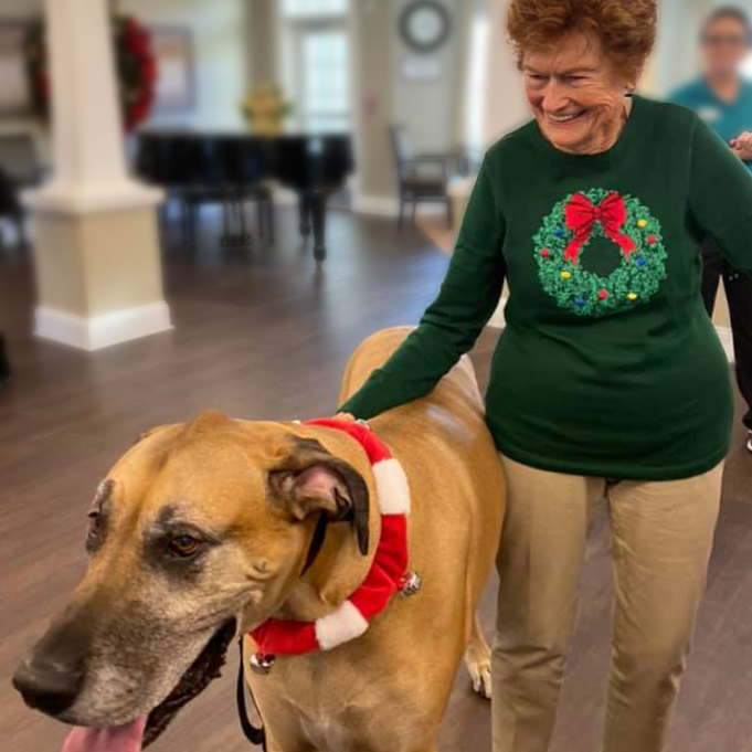 Fairview Park senior living resident with therapy dog smiling in Simpsonville, SC
