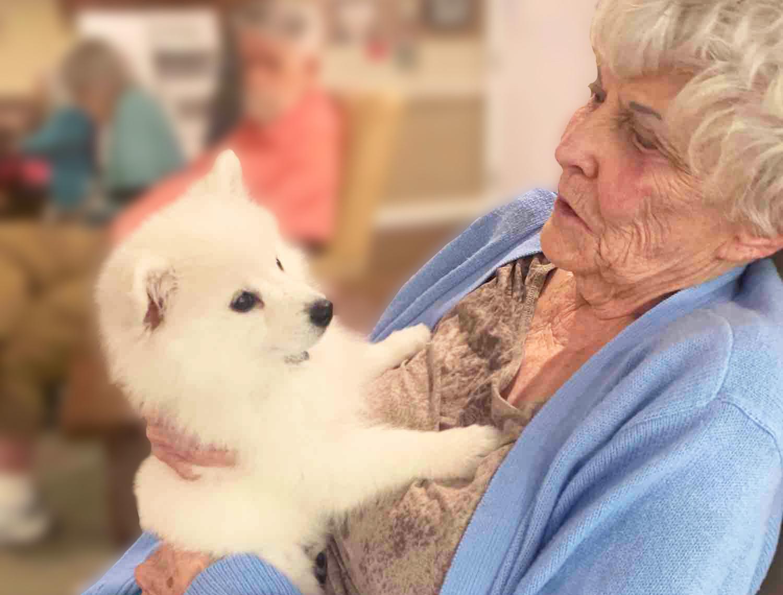 Madison at Ocoee resident holding dog